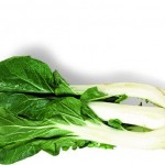 Bok Choy dietary source calcium